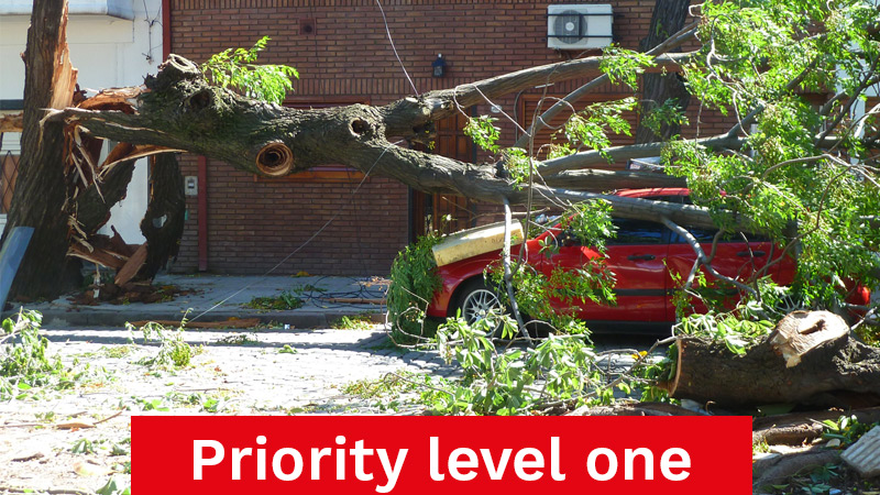 Priority Level One Emergency