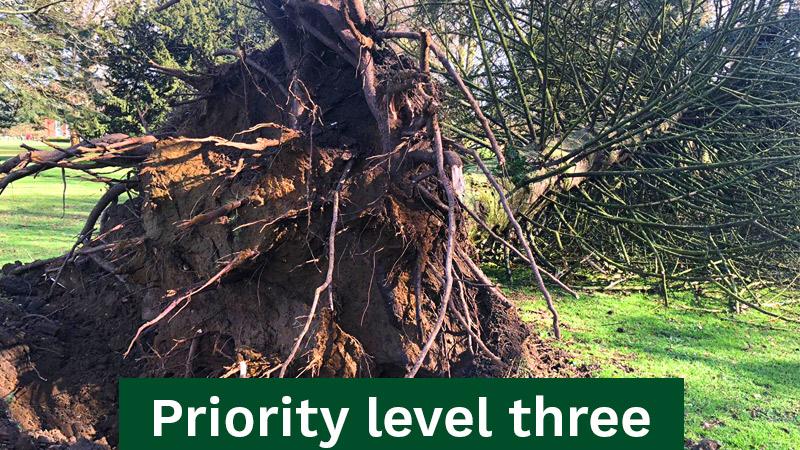 Priority Level Three Emergency